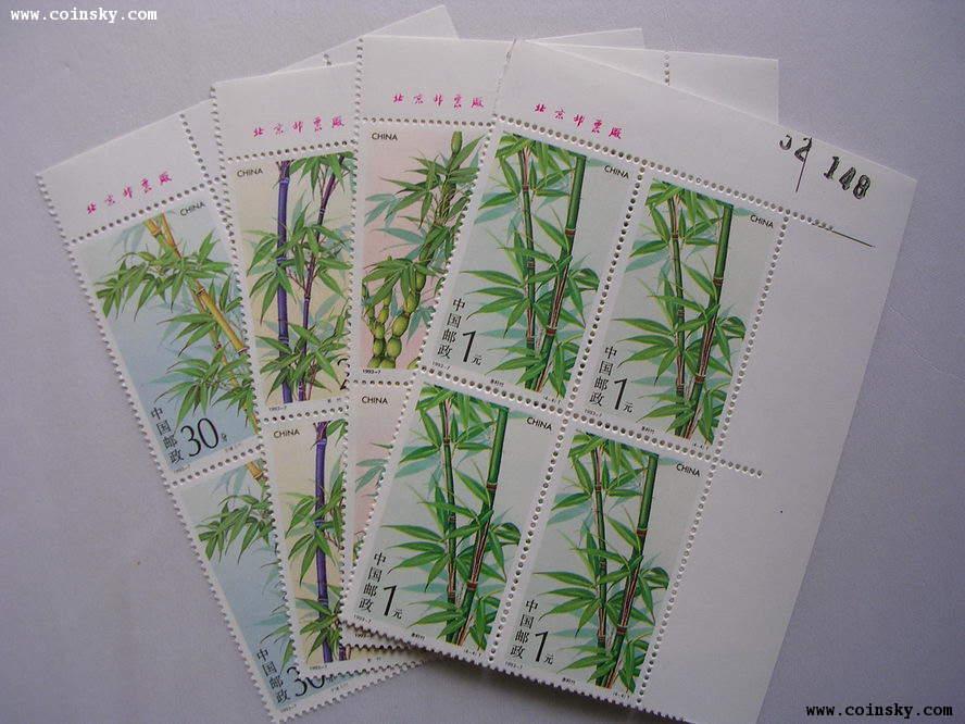 竹子的手绘平面图